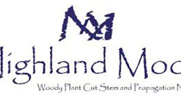 Highland Moor